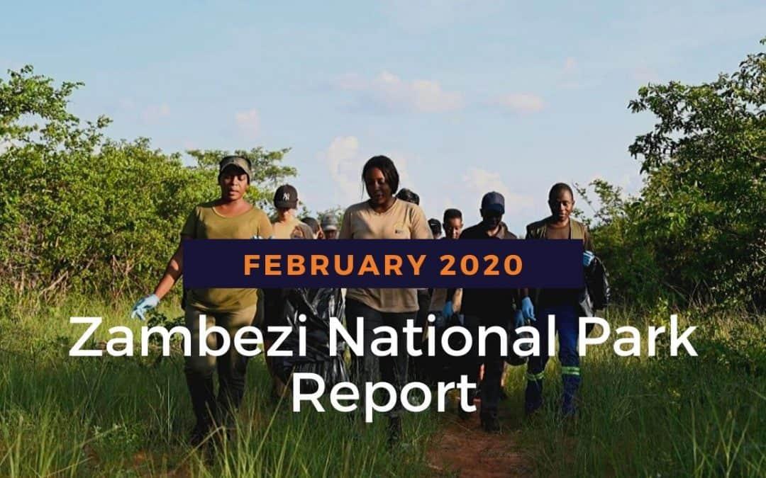Zambezi National Park: February 2020